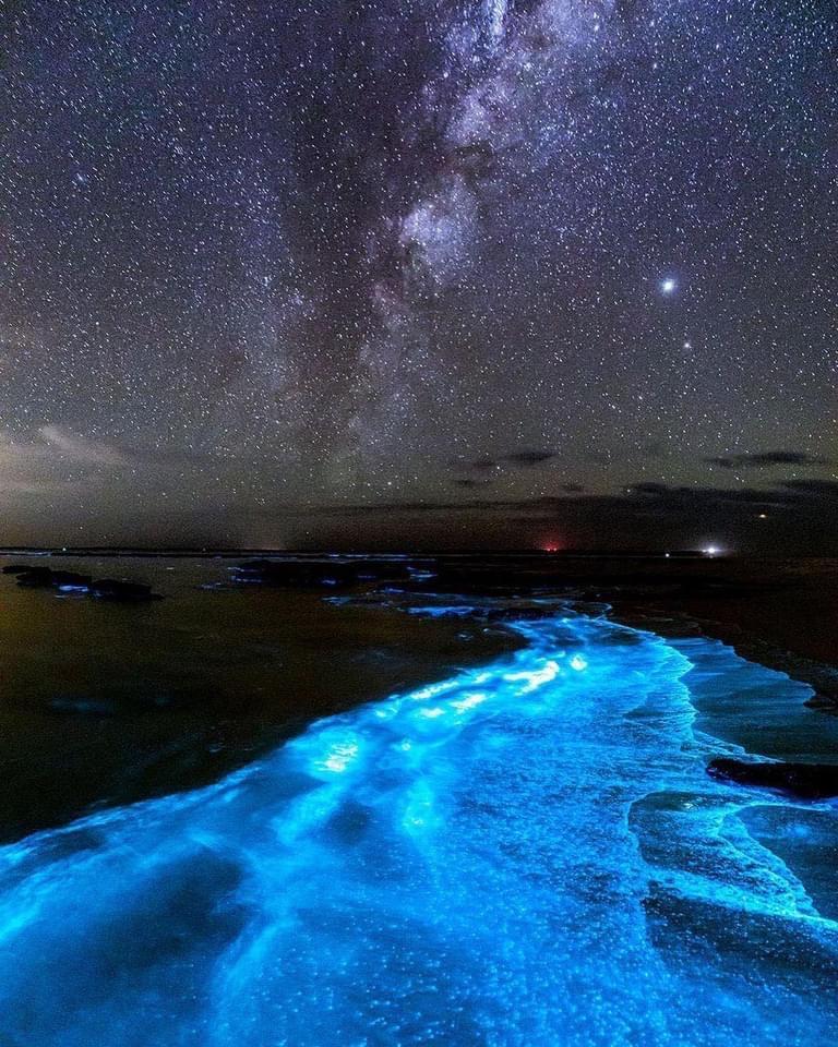 """ظاهرة """"التلألؤ البيولوجي"""" تم تصويرها مؤخرًا في شواطئ خليج """"Jervis Bay"""" في استراليا."""